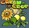 Cream of the Crop на зеркале казино